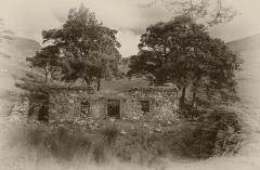 5-Saol-Tréigthe-An-Abandoned-Life